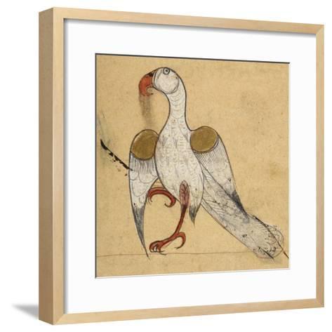 Egyptian Vulture-Aristotle ibn Bakhtishu-Framed Art Print