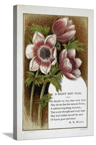 New Year Greetings Card With Floral Decoration and Poem by R. N. Milnes-W. Dickes-Stretched Canvas Print