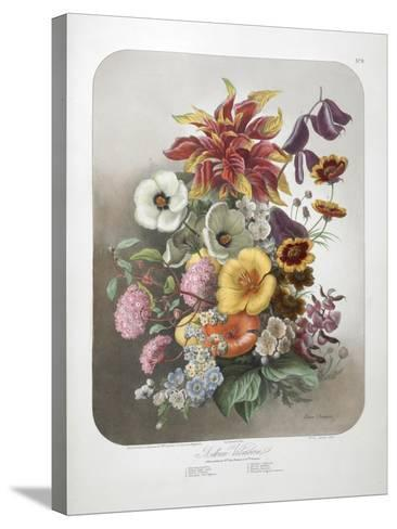 A Bouquet Of Flowers-Elisa Champin-Stretched Canvas Print