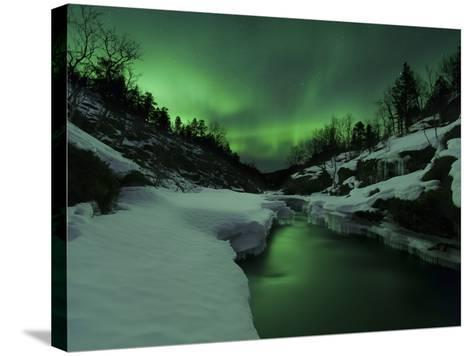 Aurora Borealis Over Tennevik River, Troms, Norway-Stocktrek Images-Stretched Canvas Print