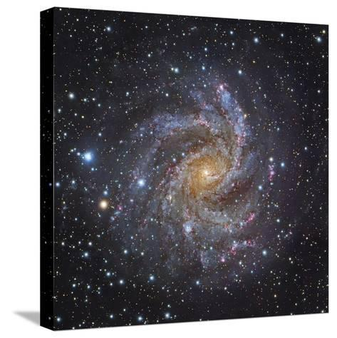 NGC 6946, a Spiral Galaxy in Cepheus-Stocktrek Images-Stretched Canvas Print