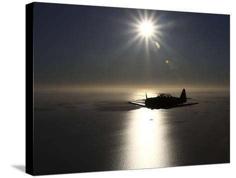 North American T-6 Texan Trainer Warbird in Swedish Air Force Colors-Stocktrek Images-Stretched Canvas Print