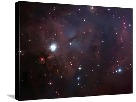 NGC 1999 Is a Dust Filled Bright Nebula-Stocktrek Images-Stretched Canvas Print