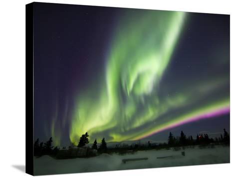 Aurora Borealis Over a Ranch, Whitehorse, Yukon, Canada-Stocktrek Images-Stretched Canvas Print