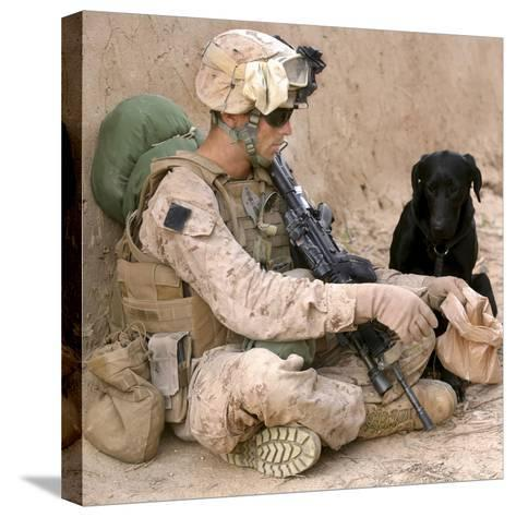 A Dog Handler Gives Water To His Dog While On a Patrol in Afghanistan-Stocktrek Images-Stretched Canvas Print