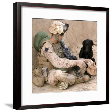 A Dog Handler Gives Water To His Dog While On a Patrol in Afghanistan-Stocktrek Images-Framed Art Print