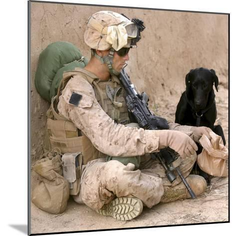 A Dog Handler Gives Water To His Dog While On a Patrol in Afghanistan-Stocktrek Images-Mounted Photographic Print