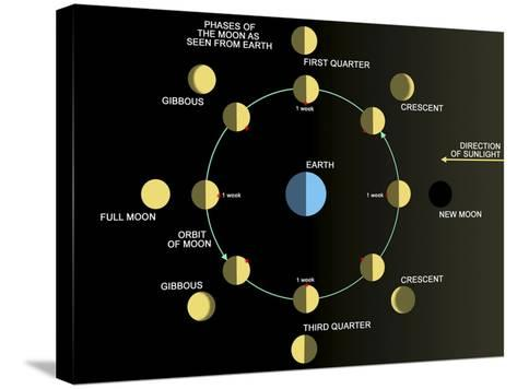 A Diagram Showing the Phases of the Earth's Moon-Stocktrek Images-Stretched Canvas Print