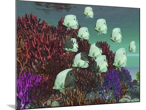 A School of Butterflyfish Swim Over Colorful Coral-Stocktrek Images-Mounted Photographic Print