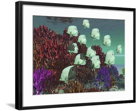A School of Butterflyfish Swim Over Colorful Coral-Stocktrek Images-Framed Art Print