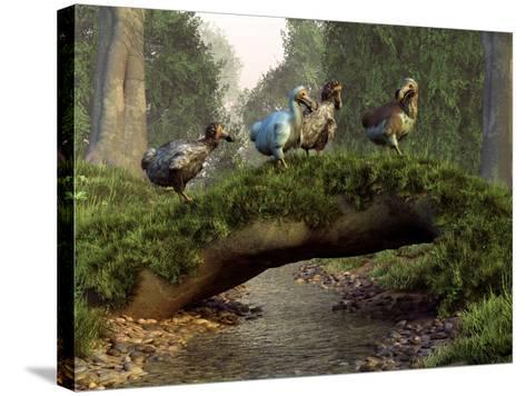 A Group of Dodo Birds Crossing a Natural Bridge Over a Stream-Stocktrek Images-Stretched Canvas Print