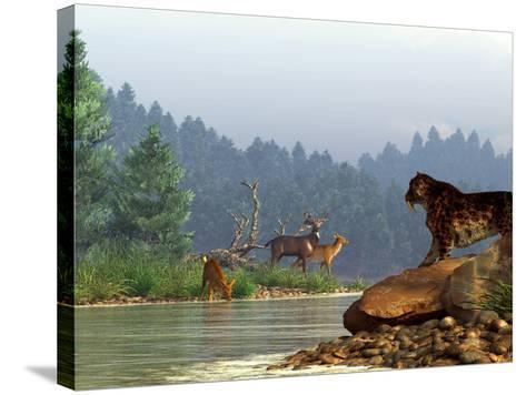 A Saber-toothed Cat Looks Across a River at a Family of Deer-Stocktrek Images-Stretched Canvas Print