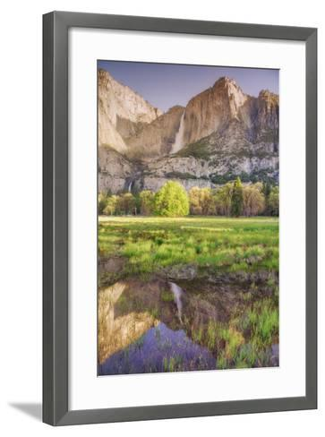 Yosemite Falls and Spring Reflection-Vincent James-Framed Art Print