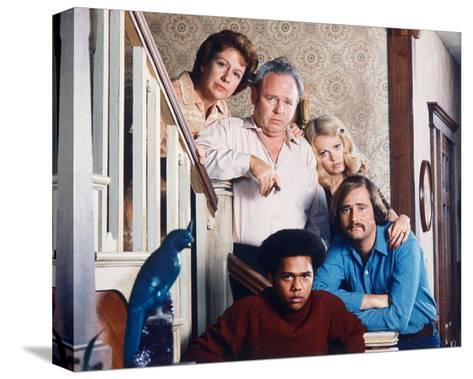 All in the Family--Stretched Canvas Print