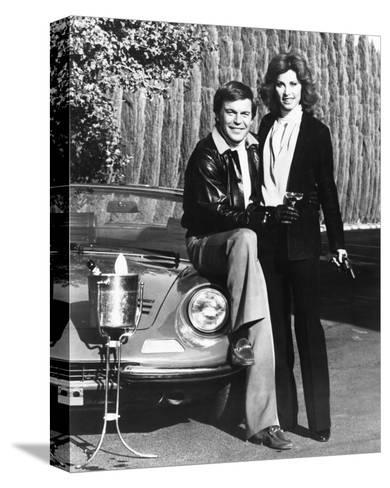 Hart to Hart--Stretched Canvas Print