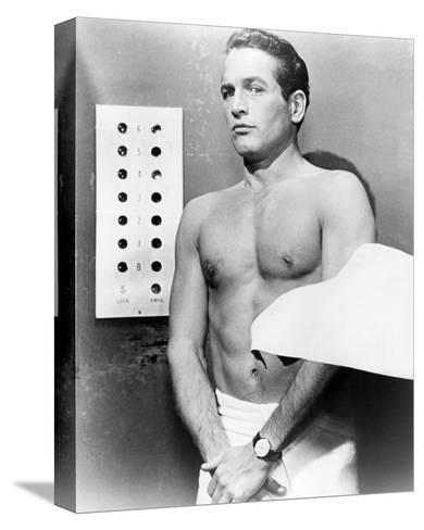 Paul Newman - The Prize--Stretched Canvas Print