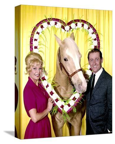 Mr. Ed--Stretched Canvas Print