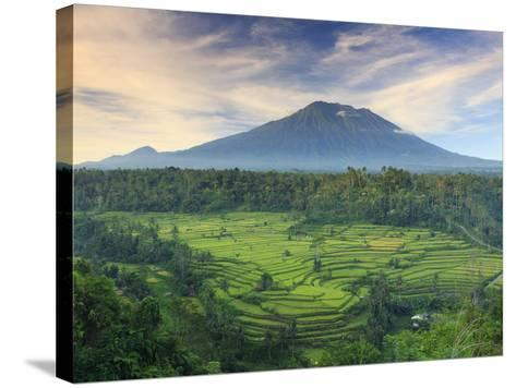 Indonesia, Bali, Redang, View of Rice Terraces and Gunung Agung Volcano-Michele Falzone-Stretched Canvas Print