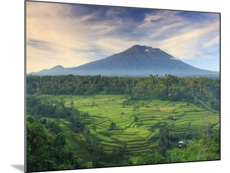 Indonesia, Bali, Redang, View of Rice Terraces and Gunung Agung Volcano-Michele Falzone-Mounted Photographic Print