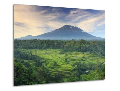 Indonesia, Bali, Redang, View of Rice Terraces and Gunung Agung Volcano-Michele Falzone-Metal Print