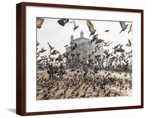 Pigeons, India Gate, Colaba, Mumbai (Bombay), India-Peter Adams-Framed Art Print