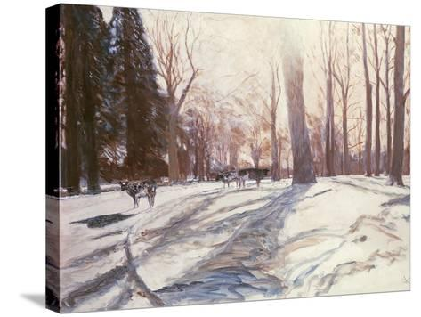Snow at Broadlands-Paul Stewart-Stretched Canvas Print