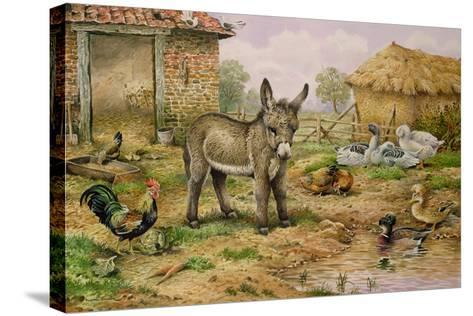 Donkey and Farmyard Fowl-Carl Donner-Stretched Canvas Print