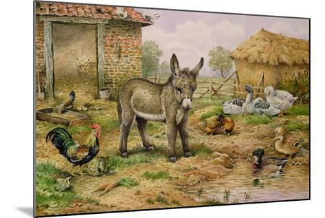 Donkey and Farmyard Fowl-Carl Donner-Mounted Giclee Print