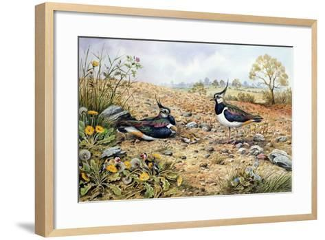 Lapwing Family with Goldfinches-Carl Donner-Framed Art Print