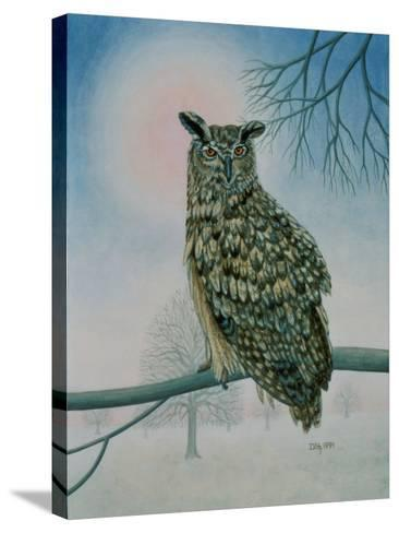 Winter-Owl-Ditz-Stretched Canvas Print