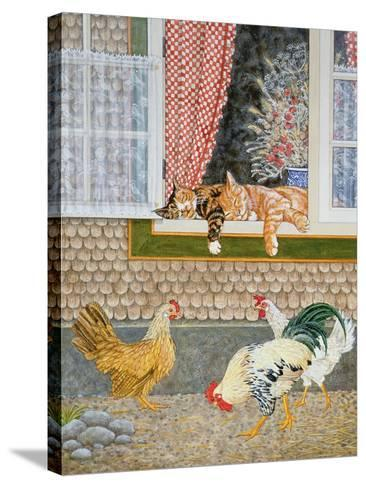 The Fowl and the Pussycats-Ditz-Stretched Canvas Print