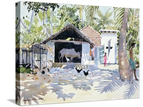 The Backwaters, Kerala, India, 1991-Lucy Willis-Stretched Canvas Print