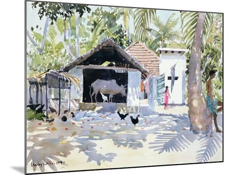 The Backwaters, Kerala, India, 1991-Lucy Willis-Mounted Giclee Print