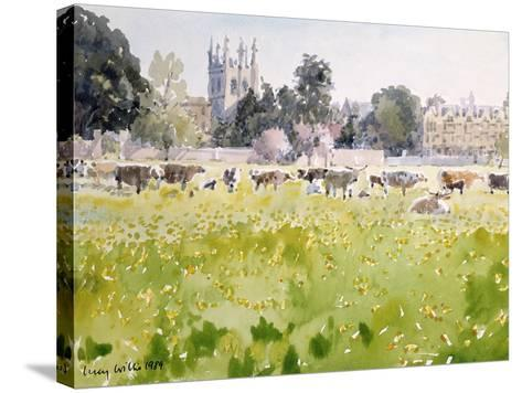 Looking across Christ Church Meadows, 1989-Lucy Willis-Stretched Canvas Print