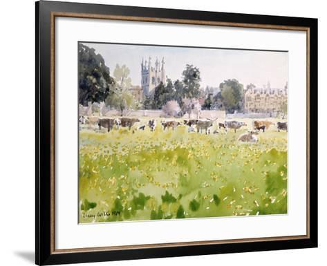 Looking across Christ Church Meadows, 1989-Lucy Willis-Framed Art Print