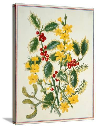 Holly, Winter Jasmine, Heath and Mistletoe-Ursula Hodgson-Stretched Canvas Print