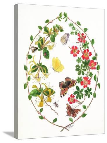 Tropeolium and Lonicera-Ursula Hodgson-Stretched Canvas Print
