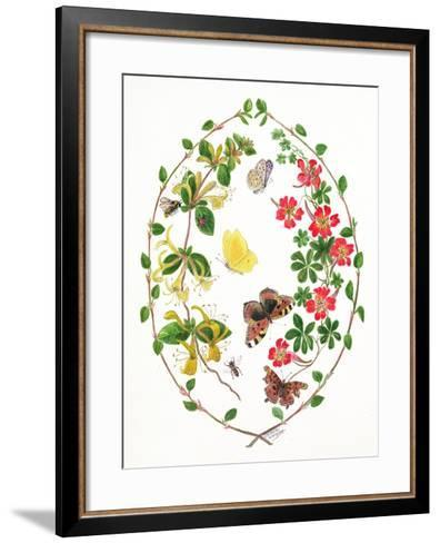 Tropeolium and Lonicera-Ursula Hodgson-Framed Art Print