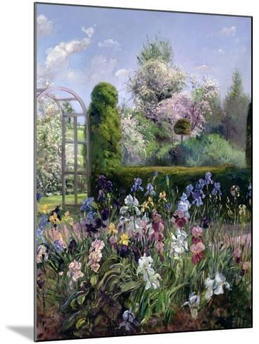 Irises in the Formal Gardens, 1993-Timothy Easton-Mounted Giclee Print
