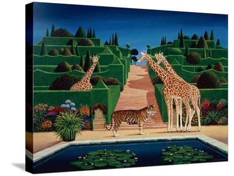 Animal Garden, 1980-Anthony Southcombe-Stretched Canvas Print