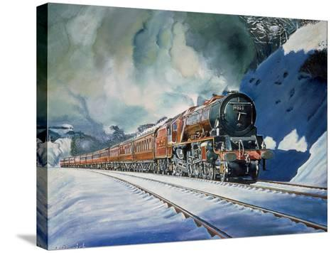 Duchess in Defiance-Kevin Parrish-Stretched Canvas Print