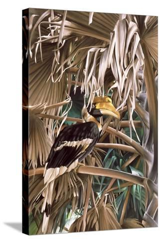 Hornbill, 1987-Sandra Lawrence-Stretched Canvas Print