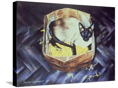 Mustdi 1983-Sandra Lawrence-Stretched Canvas Print
