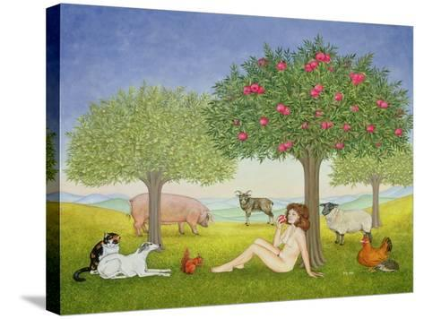 An Apple a Day, Triptych Part Three-Ditz-Stretched Canvas Print