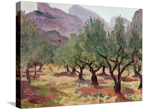 Olives under the Alpilles-Augustus Edwin John-Stretched Canvas Print