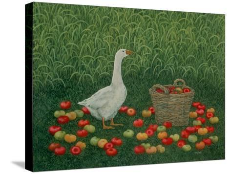 The Apple Basket-Ditz-Stretched Canvas Print
