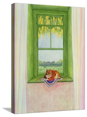 Laburnum Cat-Ditz-Stretched Canvas Print