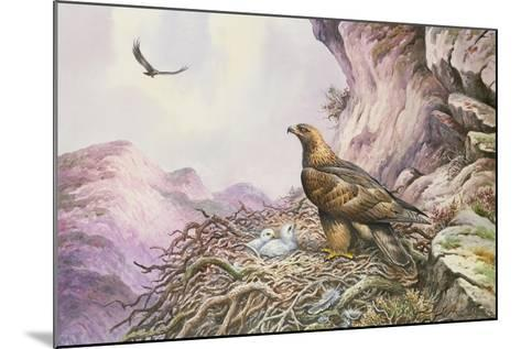 Golden Eagles at their Eyrie-Carl Donner-Mounted Giclee Print