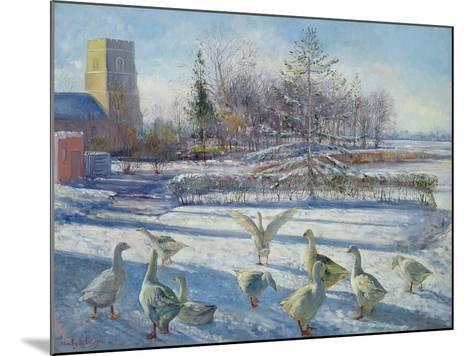 Snow Geese, Winter Morning-Timothy Easton-Mounted Giclee Print
