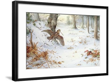 Snipe in Wooded Landscape-Carl Donner-Framed Art Print